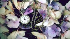 Pretty Pocket Watch Wallpaper 45052