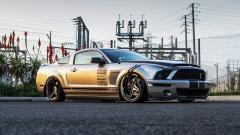 Shelby Cobra GT500 Wallpaper HD 44661