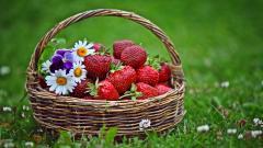 Strawberries Background 38829