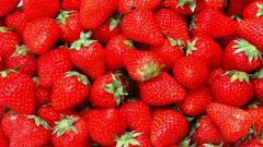 Strawberries Wallpaper 38828