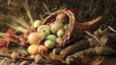 Thanksgiving Wallpaper 43031