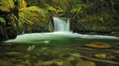 Washington State Background 34253