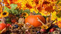 Wonderful Thanksgiving Wallpaper 43032