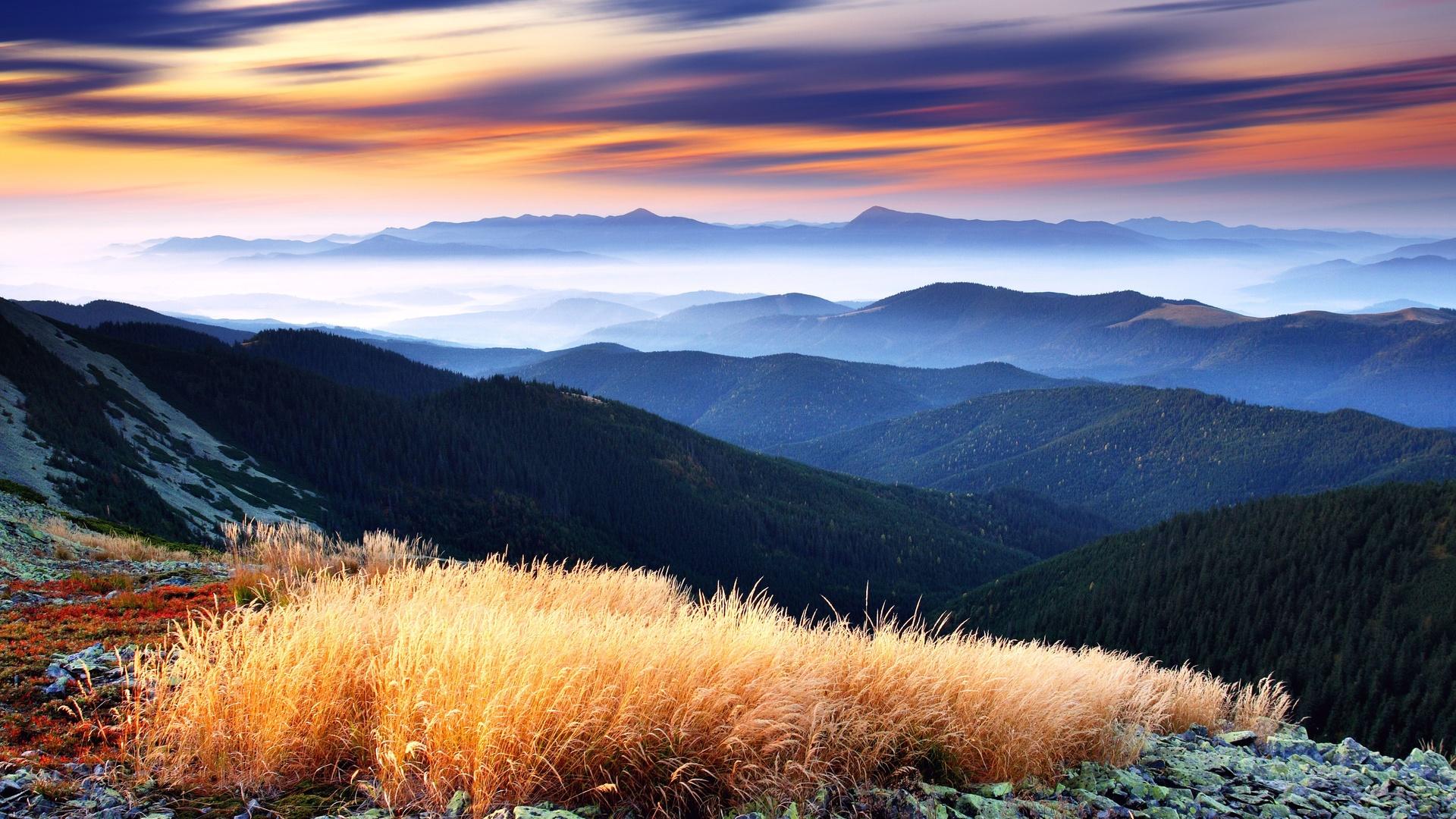 amazing valley 29201