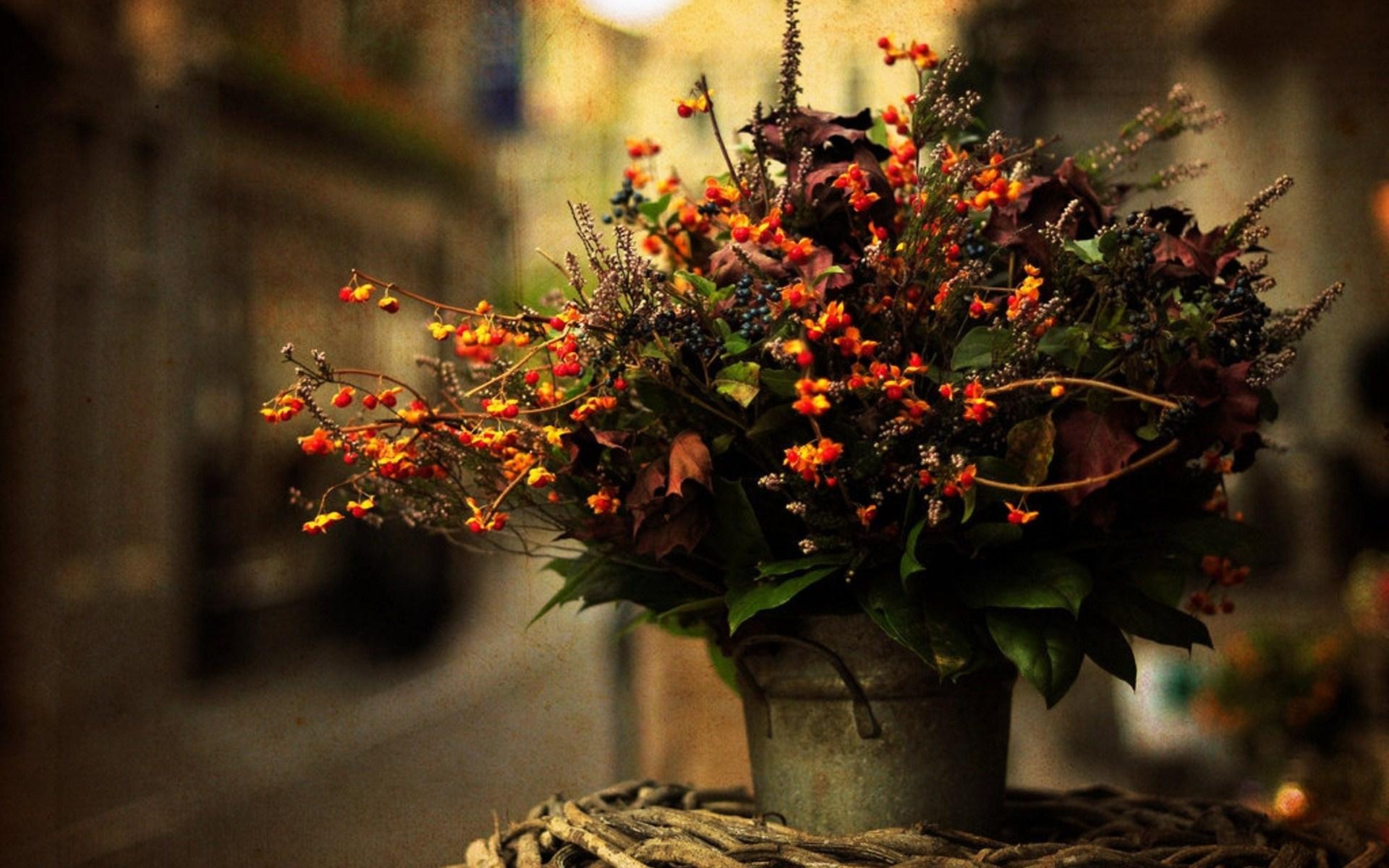 bouquet flowers 23157