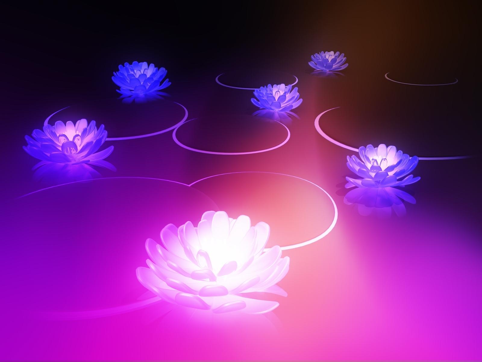 cool lotus wallpaper 22587