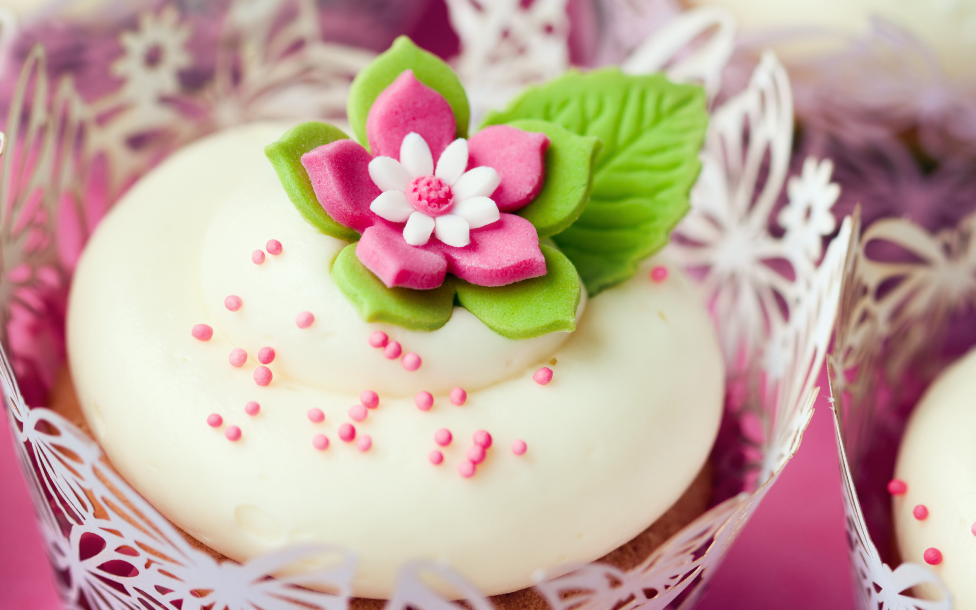 cupcake frosting wallpaper hd 43582 1920x1200 px
