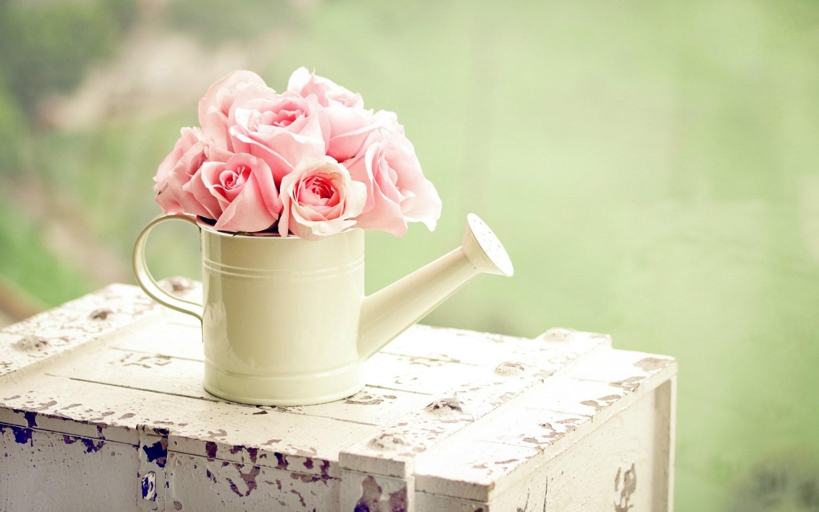 cute pink flowers wallpaper 42176