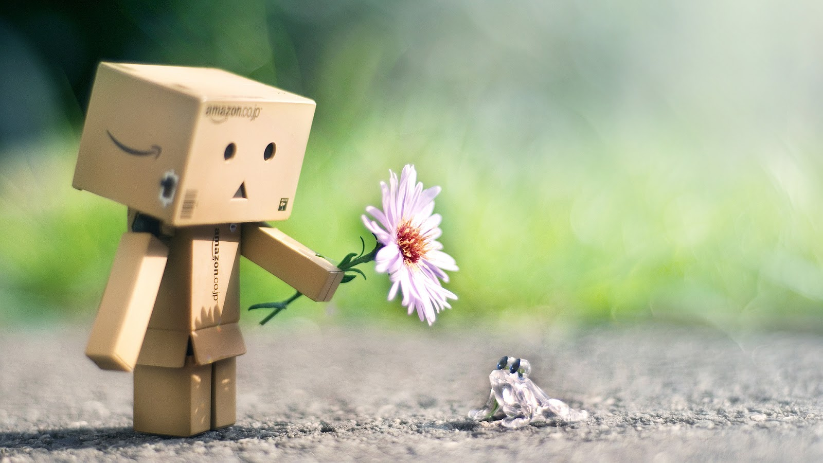 danbo pictures 26625
