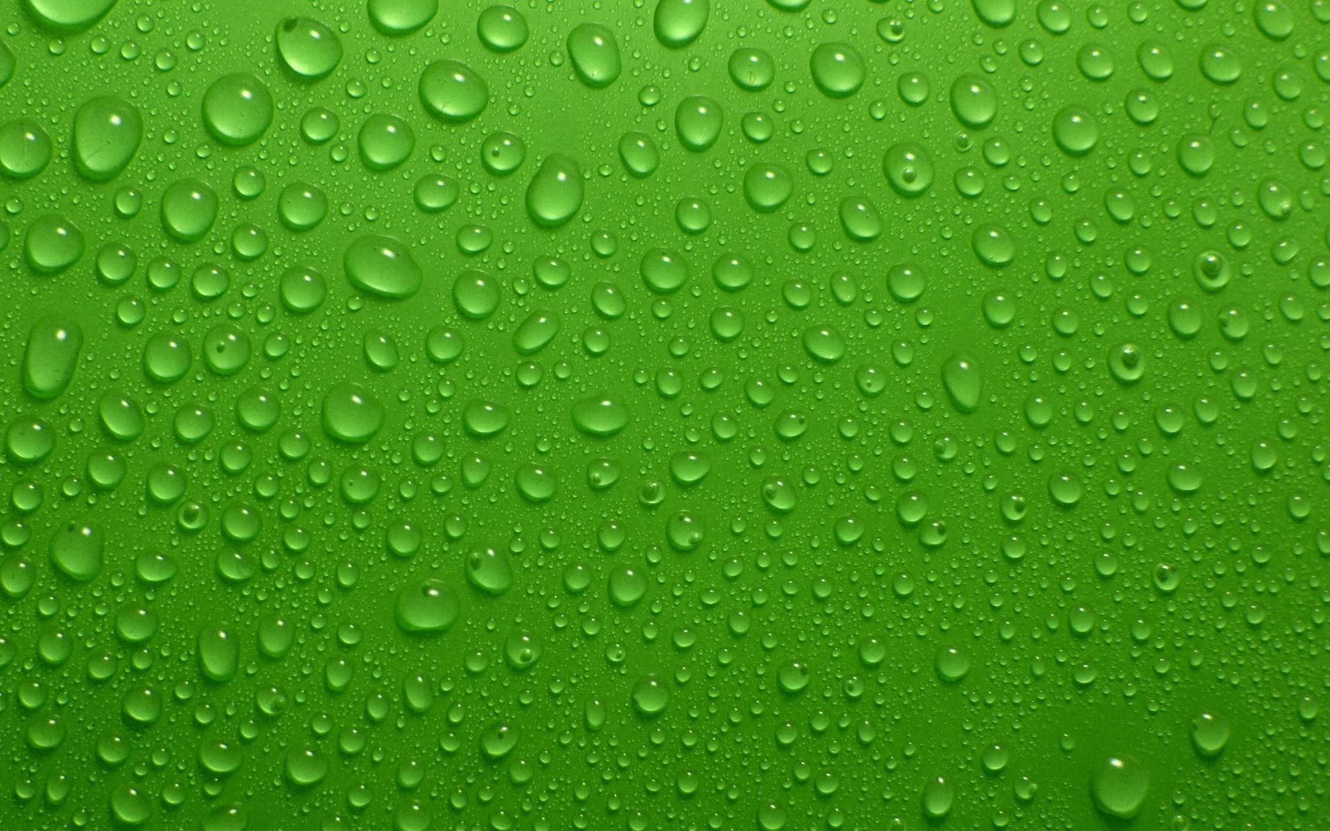 Green Water Wallpaper 17321 1920x1200 px ~ HDWallSource.com