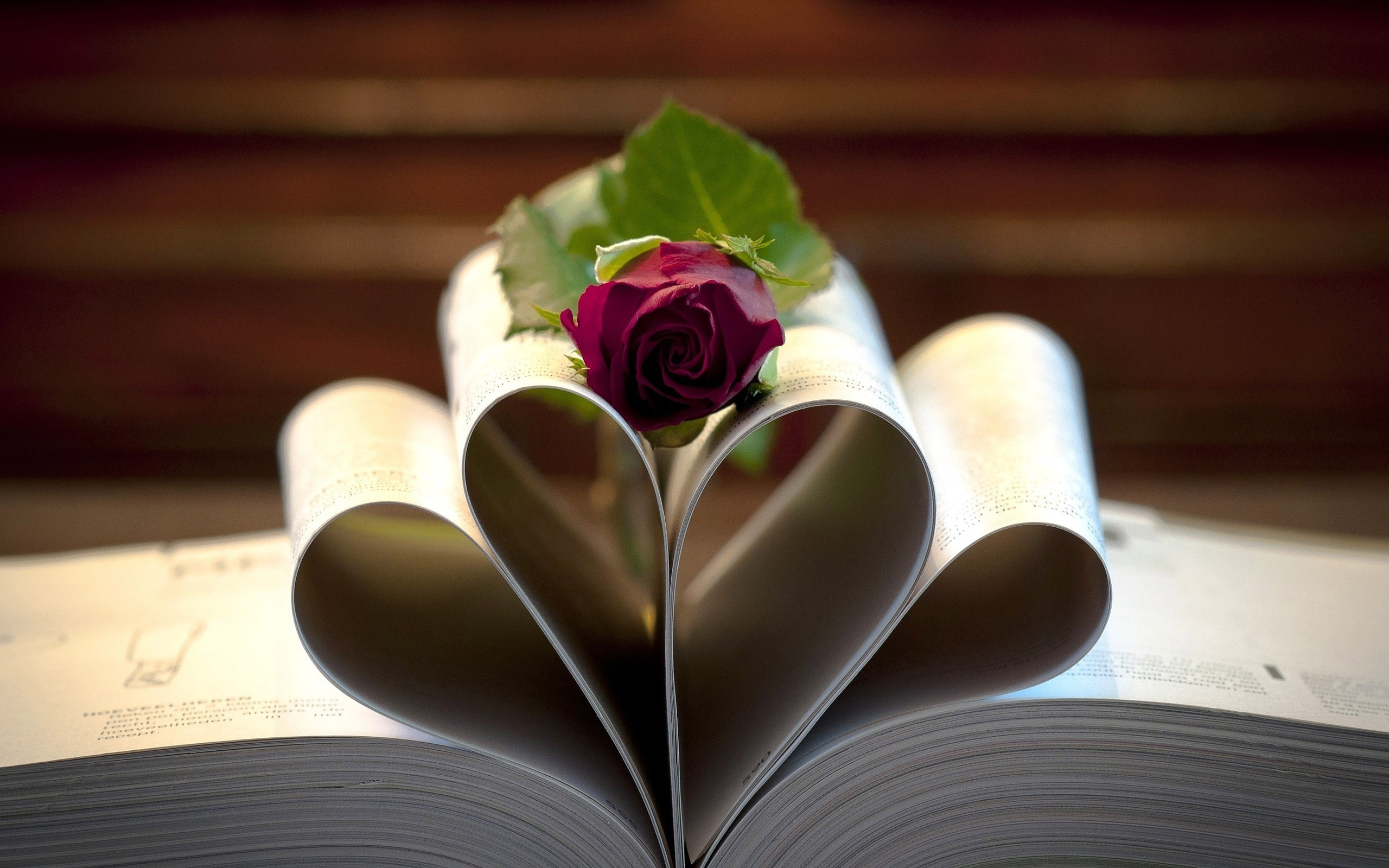 lovely book close up wallpaper 43602