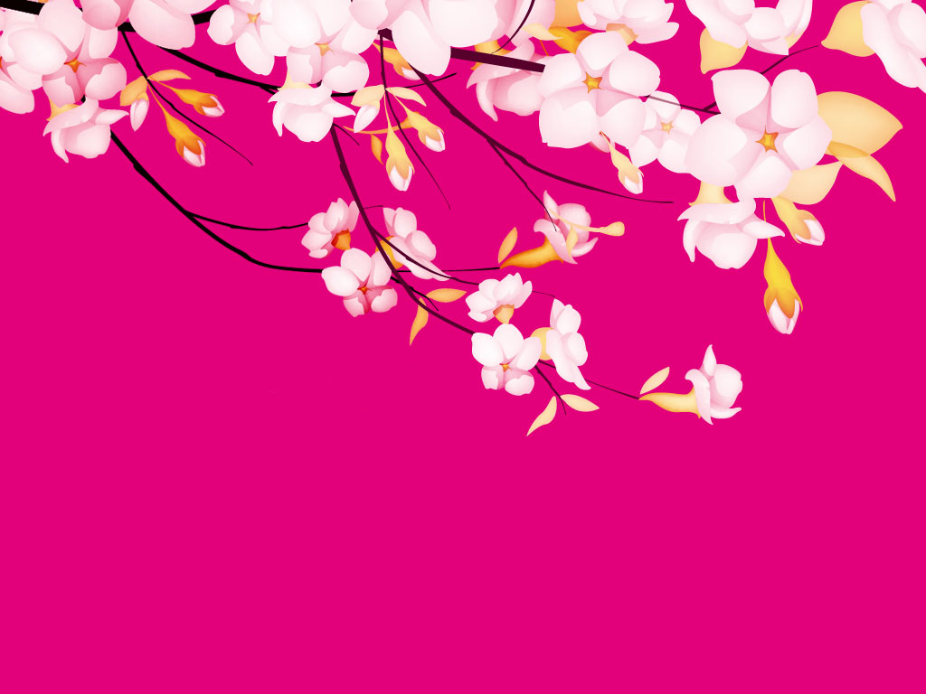 Pretty backgrounds 17142 1024x768 px for Pretty wallpaper for walls