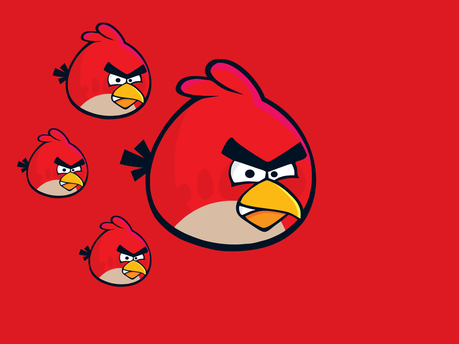 Red Angry Bird Wallpaper 30403 1600x1200 px HDWallSourcecom