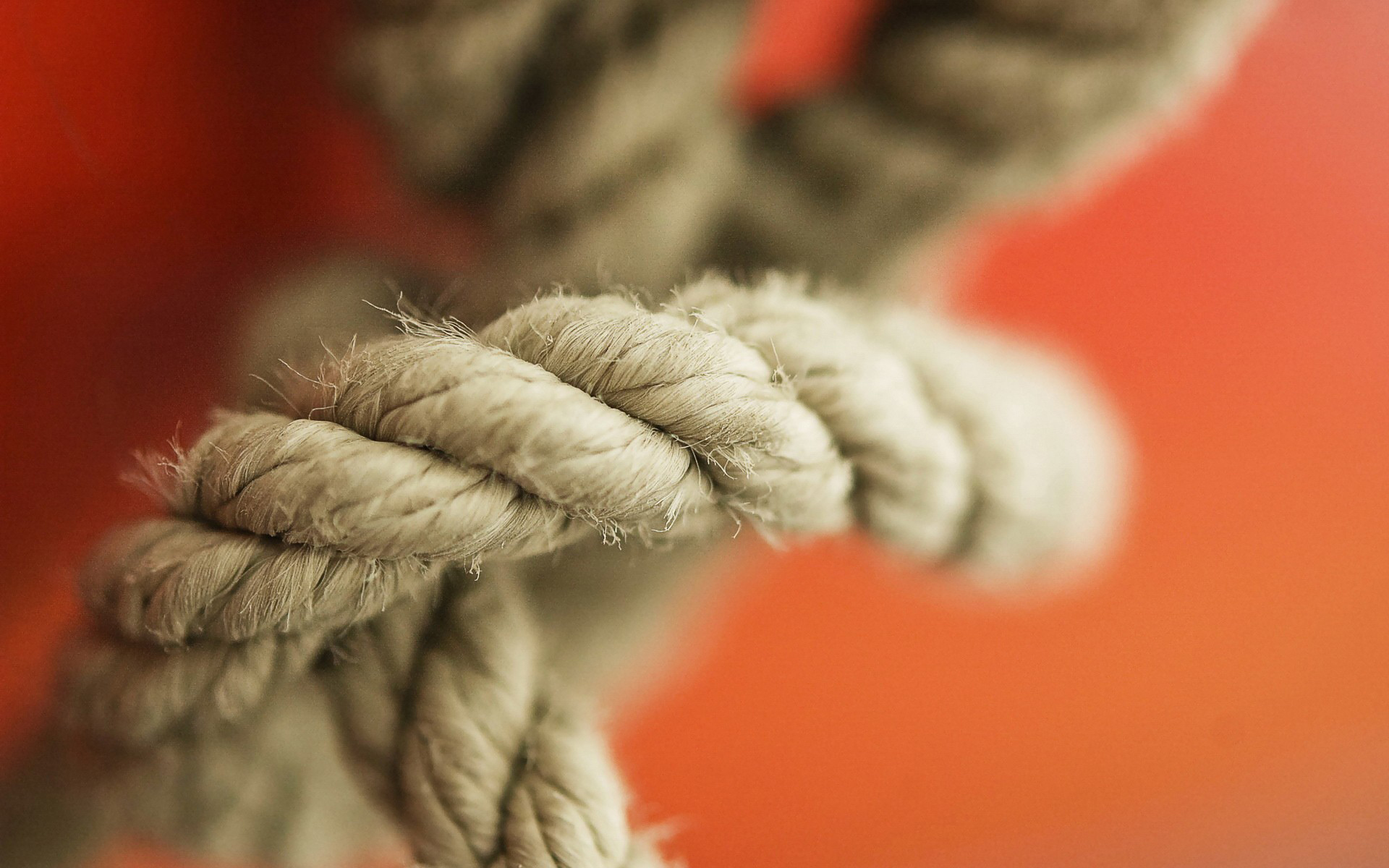 rope close up wallpaper 45032