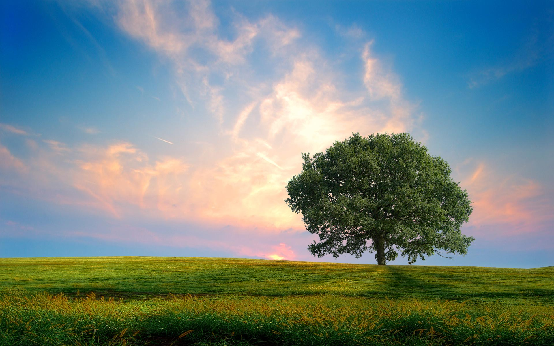 summer landscape image wallpaper - photo #17