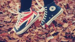 Adorable Converse Wallpaper 17056