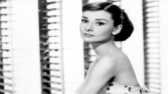 Audrey Hepburn Wallpaper 17098