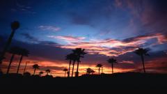 Beautiful California 26192