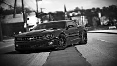 Black Camaro Background 37716