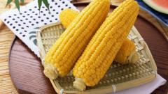 Corn Pictures 37684