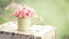 Cute Pink Flowers Wallpaper 42176