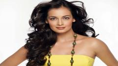 Dia Mirza Pictures 30395