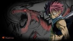 Fairy Tail Wallpaper 7852