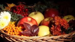 Food Basket Wallpaper 43082