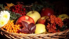 Food Basket Wallpaper 43082