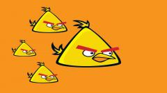 Free Yellow Angry Bird Wallpaper 30397