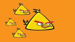 Free Yellow Angry Bird Wallpaper 30397