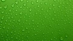 Green Water Wallpaper 17321