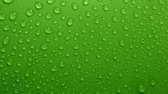 Green Water Wallpaper 17321