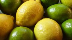 Lemon and Lime Wallpaper 42109