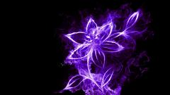 Neon Flowers 13298