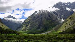 New Zealand 28497