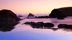 New Zealand Beach 28495