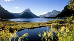 New Zealand Pictures 28477