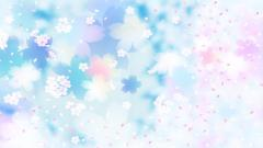 Pretty Cherry Blossom Wallpaper 40332