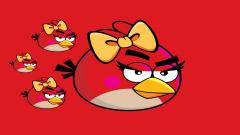 Red Angry Bird Wallpaper 30402