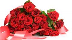 Roses 31696