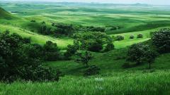 Valley Background 29189