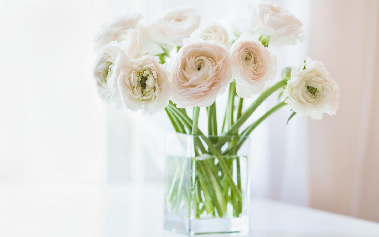 white flowers 7719
