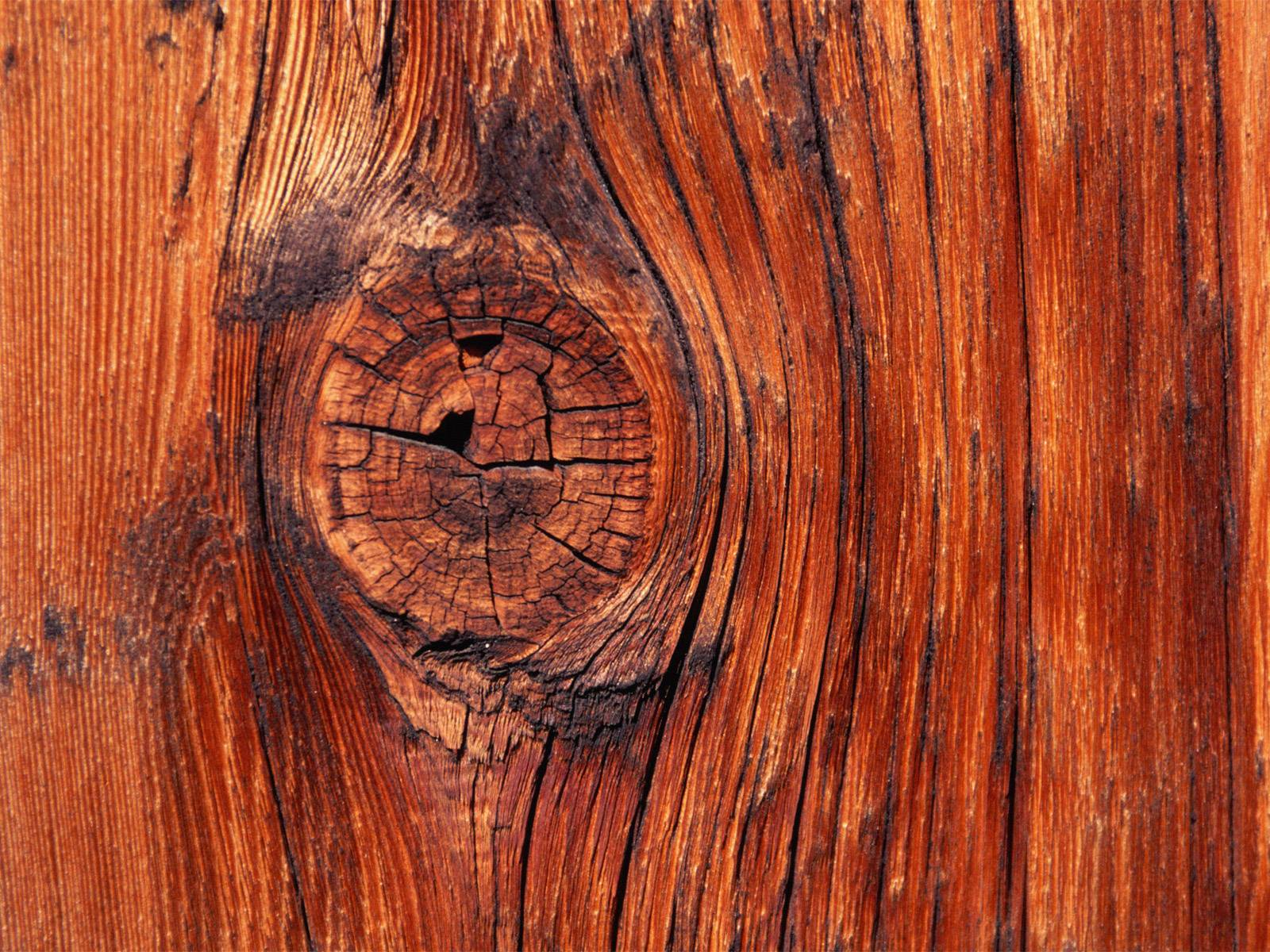 wood wallpaper 10117