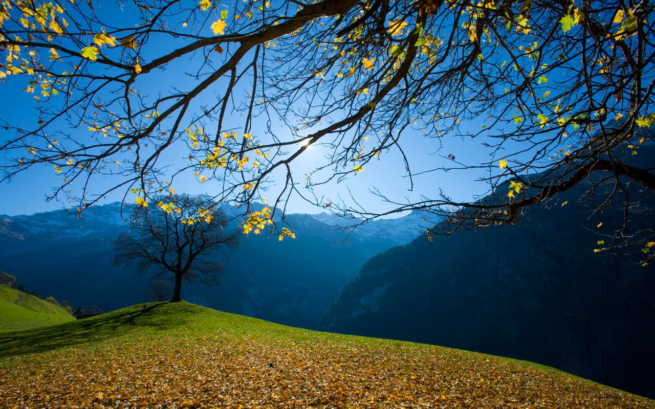 awesome nature wallpaper 26197 1280x800 px hdwallsourcecom