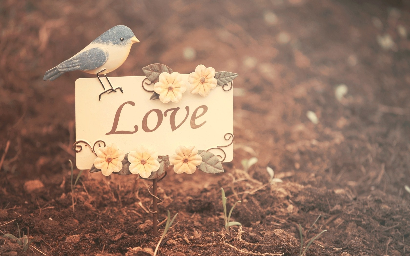 cute love backgrounds 18165