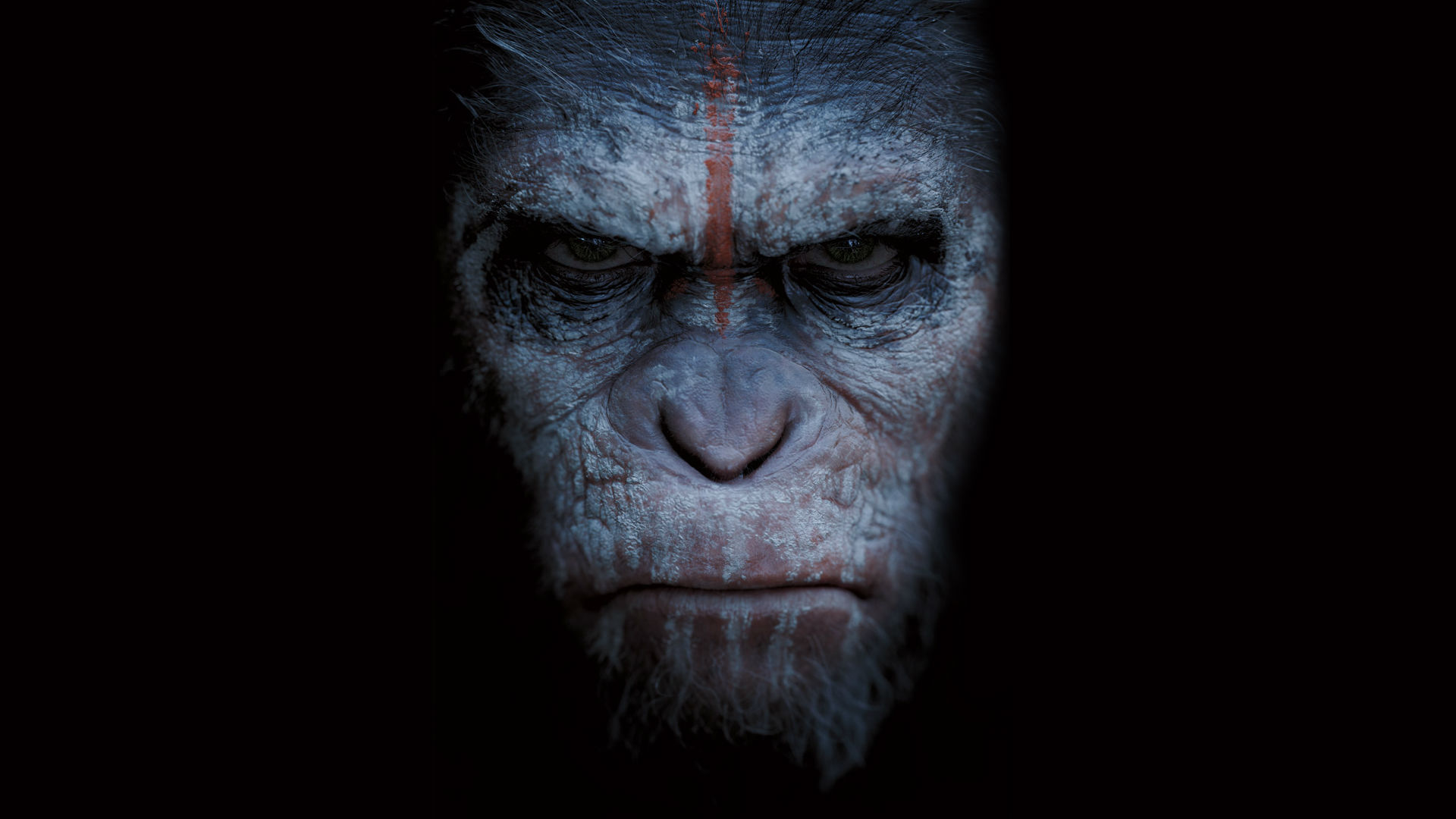 dawn of the planet of the apes wallpaper 33541