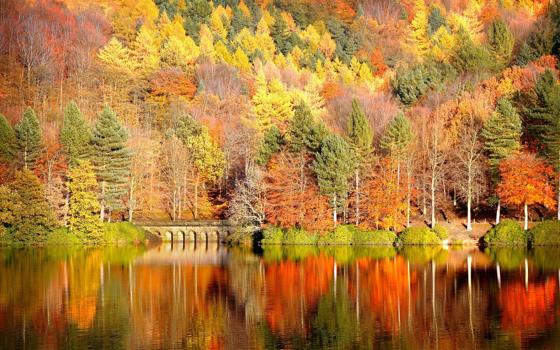 free autumn wallpaper 20819