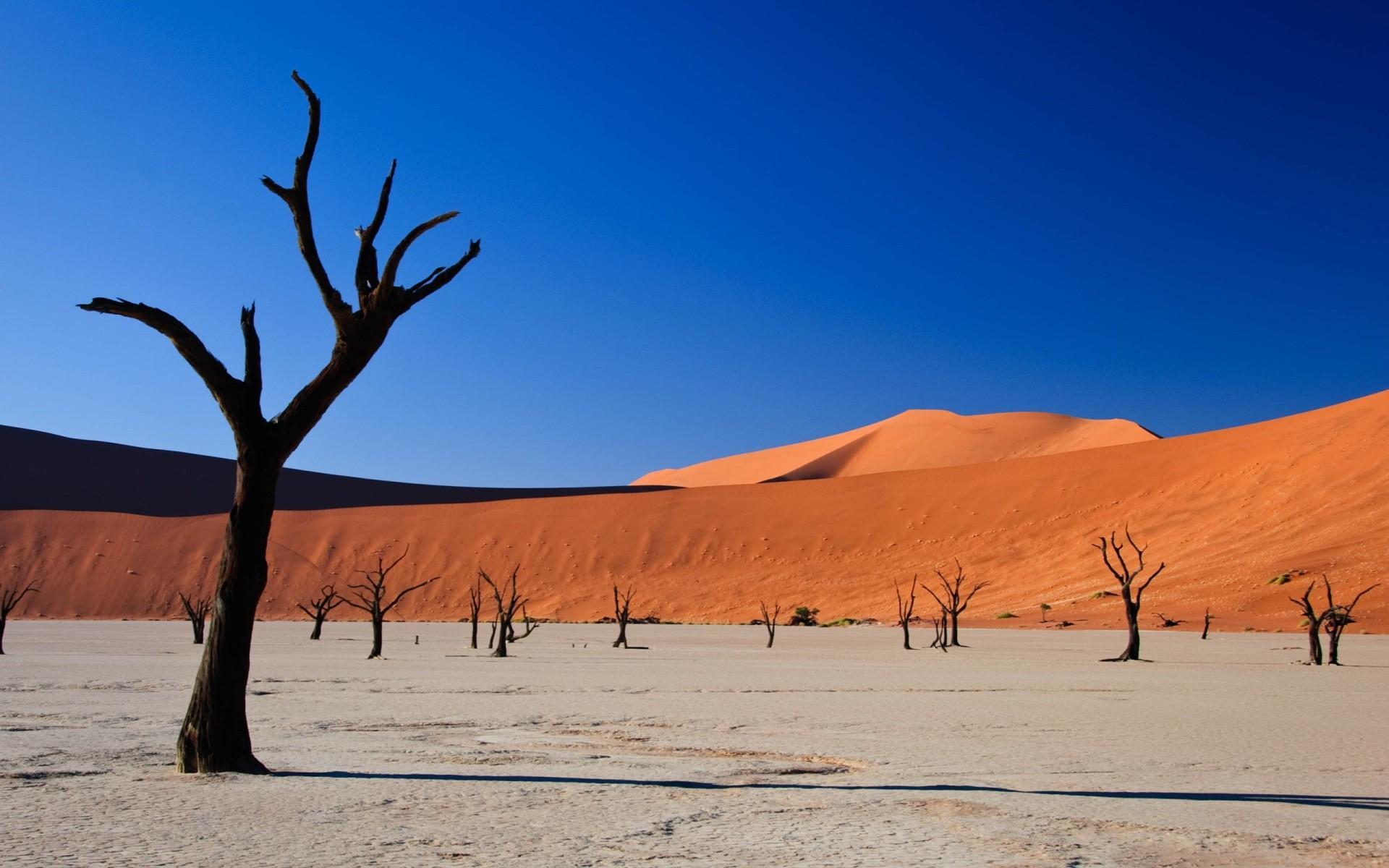 free desert landscape wallpaper 37480