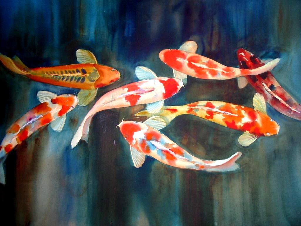 Koi fish 7920 1024x768 px for Koi fish wallpaper for walls